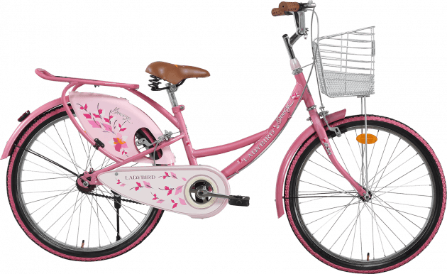 BSA Ladybird Breeze Junior 24T Flamingo Pink