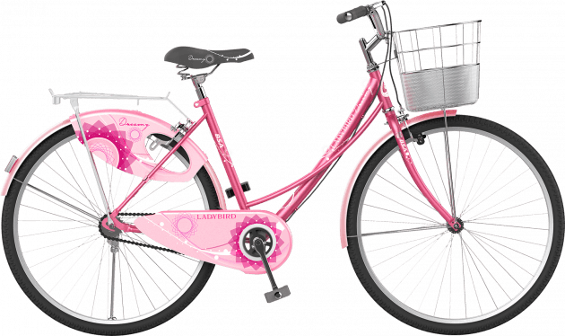 BSA Ladybird Dreamz 26T Flamingo Pink